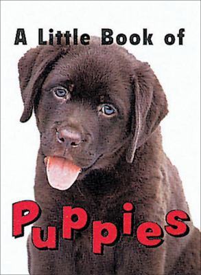 Little Book of Puppies 9780836236392