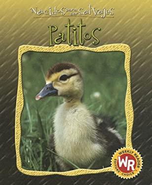Patitos = Little Ducks 9780836874259