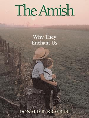 The Amish: Why They Enchant Us 9780836192414