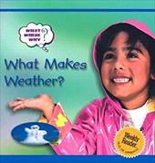 What Makes Weather? 3649414
