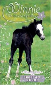 Friendly Foal 3695687