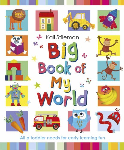 Big Book of My World 9780857530424