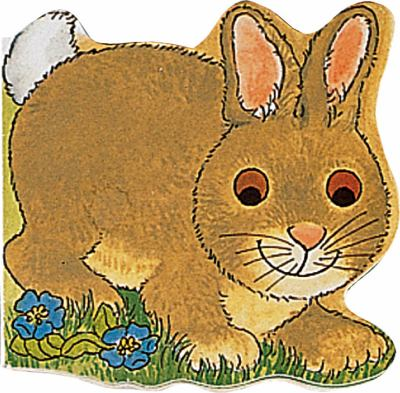 Bunny 9780859539074