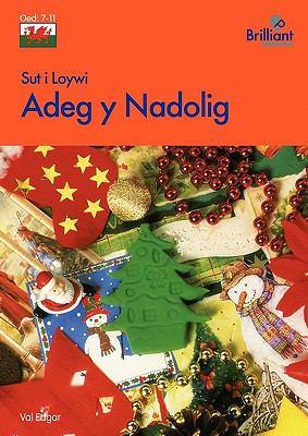 Sut I Loywi Adeg y Nadolig 9780857472205