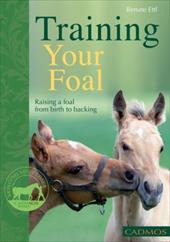 Training Your Foal: Raising a Foal from Birth to Backing 11777820