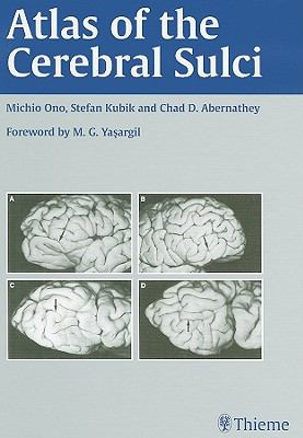 Atlas of the Cerebral Sulci 9780865773622