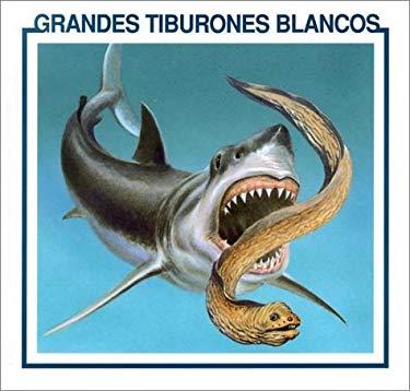 Grandes Tiburones Blancos = Great White Sharks 9780865932029