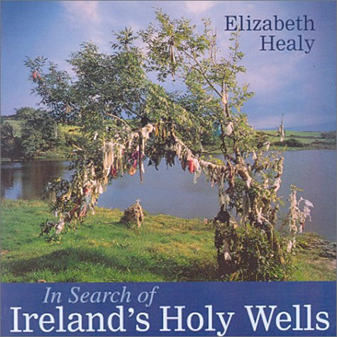 In Search of Ireland's Holy Wells 9780863278655