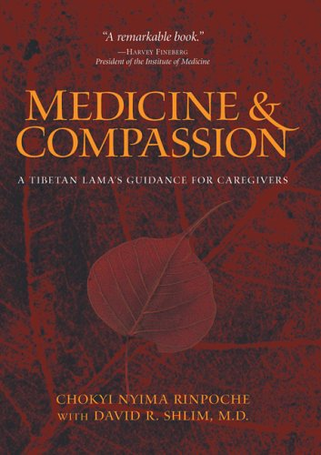Medicine & Compassion: A Tibetan Lama's Guidance for Caregivers 9780861715121