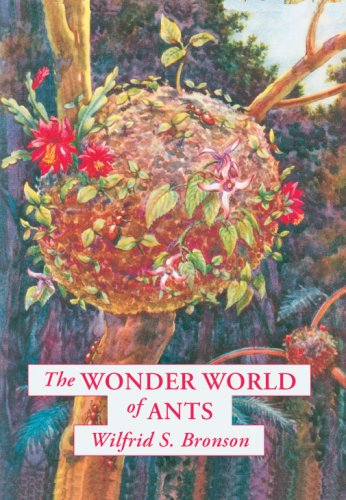 The Wonder World of Ants 9780865346918