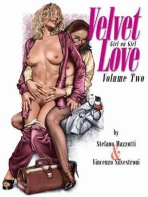 Velvet Love, Volume 2 9780865621459
