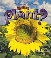 What Is a Plant? 3792876