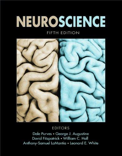Neuroscience 9780878936953