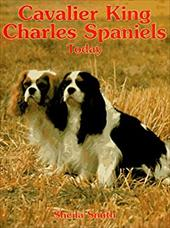 Cavalier King Charles Spaniels Today 3885527