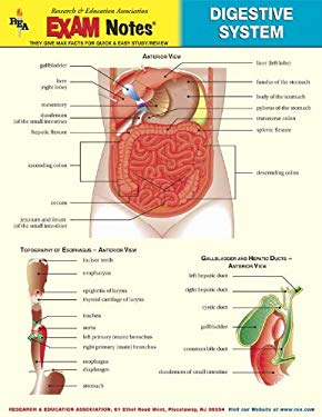 biochemistry digestive system notes In the human digestive system, large organic masses are broken down into smaller particles that the body can use as fuel this is a complex process the breakdo.