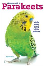 Parakeets 3892559