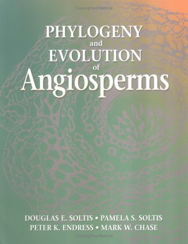 Angiosperm Phylogeny and Evolution