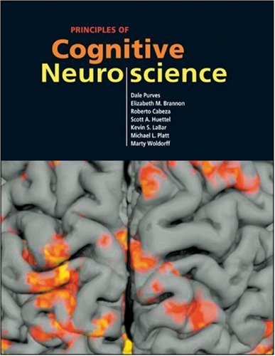 Principles of Cognitive Neuroscience 9780878936946