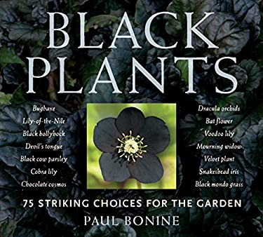 Black Plants: 75 Striking Choices for the Garden 9780881929812