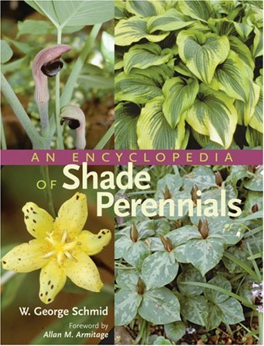 Encyclopedia of Shade Perennials 9780881925494