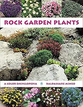 Rock Garden Plants 9780881924329