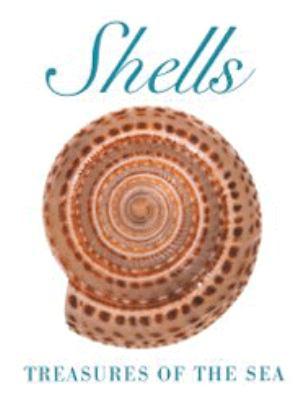 Shells 9780883635957