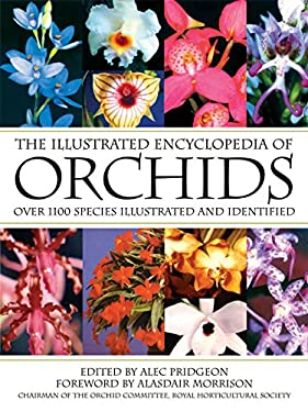 The Illustrated Encyclopedia of Orchids 9780881928013