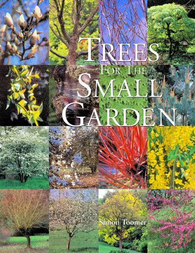 Trees for the Small Garden 9780881926835