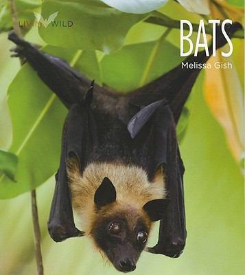 Bats 9780898125498