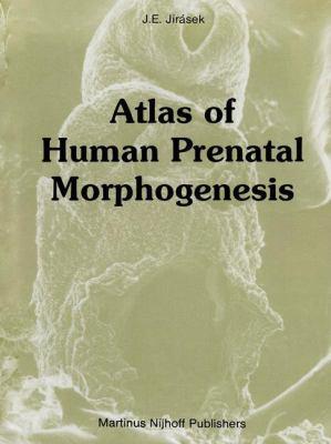 Atlas of Human Prenatal Morphogenesis 9780898385588