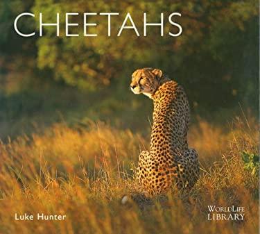 Cheetahs 9780896585010