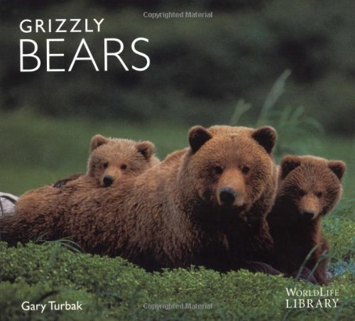 Grizzly Bears 9780896583344
