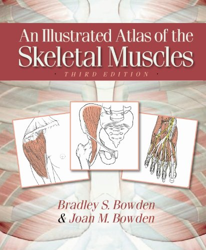 Illustrated Atlas of Skeletal Muscles 9780895828088