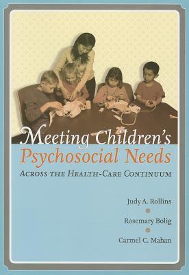 Meeting Children's Psychosocial Needs Across the Healtcare Continuum 9780890799925