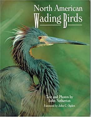 North American Wading Birds 9780896584020