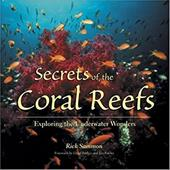 Secrets of the Coral Reefs: Exploring the Underwater Wonders 4052041