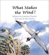What Makes the Wind - Pbk 4031823