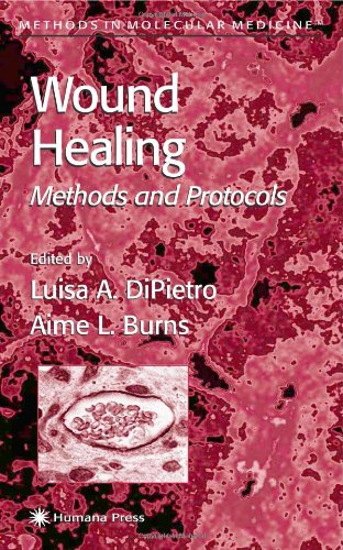 Wound Healing: Methods and Protocols 9780896039995