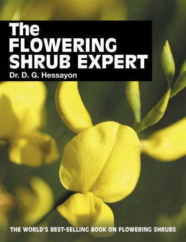 The Flowering Shrub Expert 9780903505390
