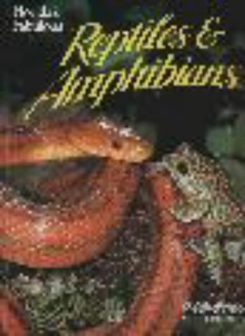 Florida's Fabulous Reptiles and Amphibians: Snakes, Lizards, Alligators, Frogs, and Turtles 9780911977110