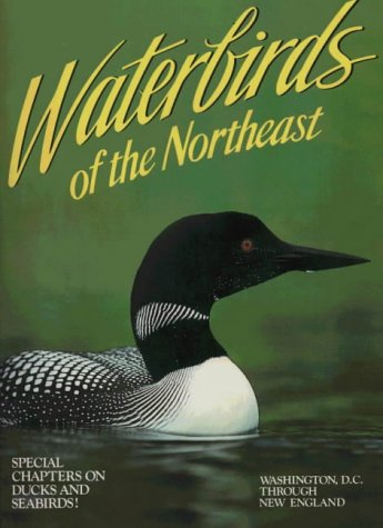 Waterbirds of the Northeast: Washington, D.C. Through New England 9780911977097