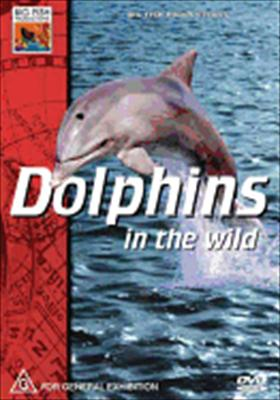 Dolphins in the Wild