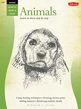 Drawing: Animals 9780929261737