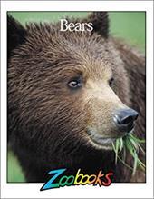 Bears 4205846