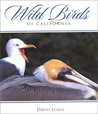 Wild Birds of California 9780944197622