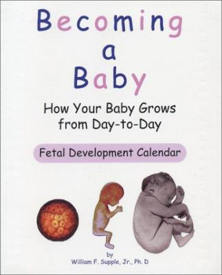 Becoming a Baby: How Your Baby Grows from Day-To-Day 9780965391146