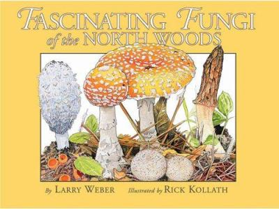 Fascinating Fungi of the North Woods 9780967379395