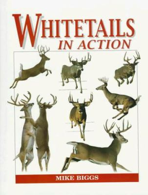 Whitetails in Action 9780964291522