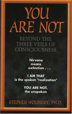 You Are Not: Beyond the Three Veils of Consciousness 9780967036298