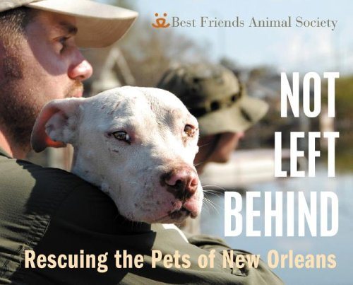 Not Left Behind: Rescuing the Pets of New Orleans 9780976744252